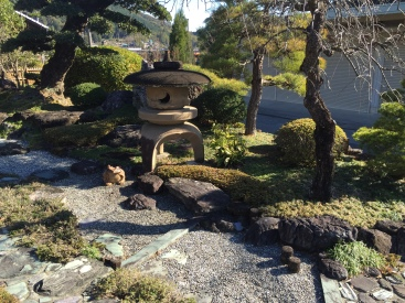 Japanese stone lantern in garden with stones, Japanese pine tree