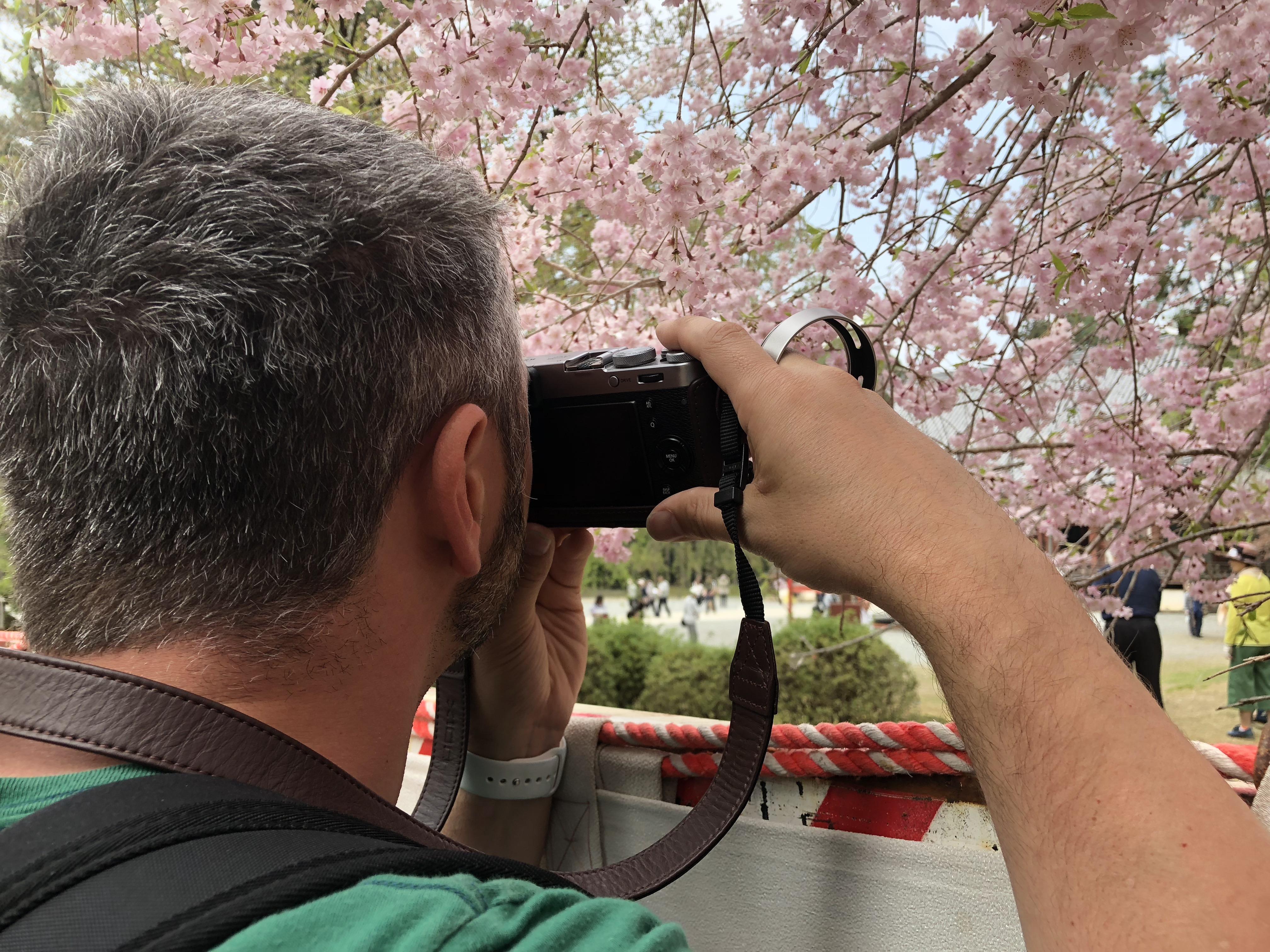 Super Sake Boy taking a photo of the sakura, cherry blossom at Daigo-Ji in Kyoto in Japan