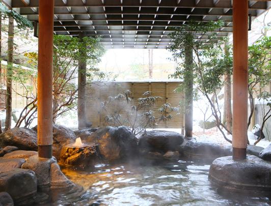 hoshino-kai-nikko10