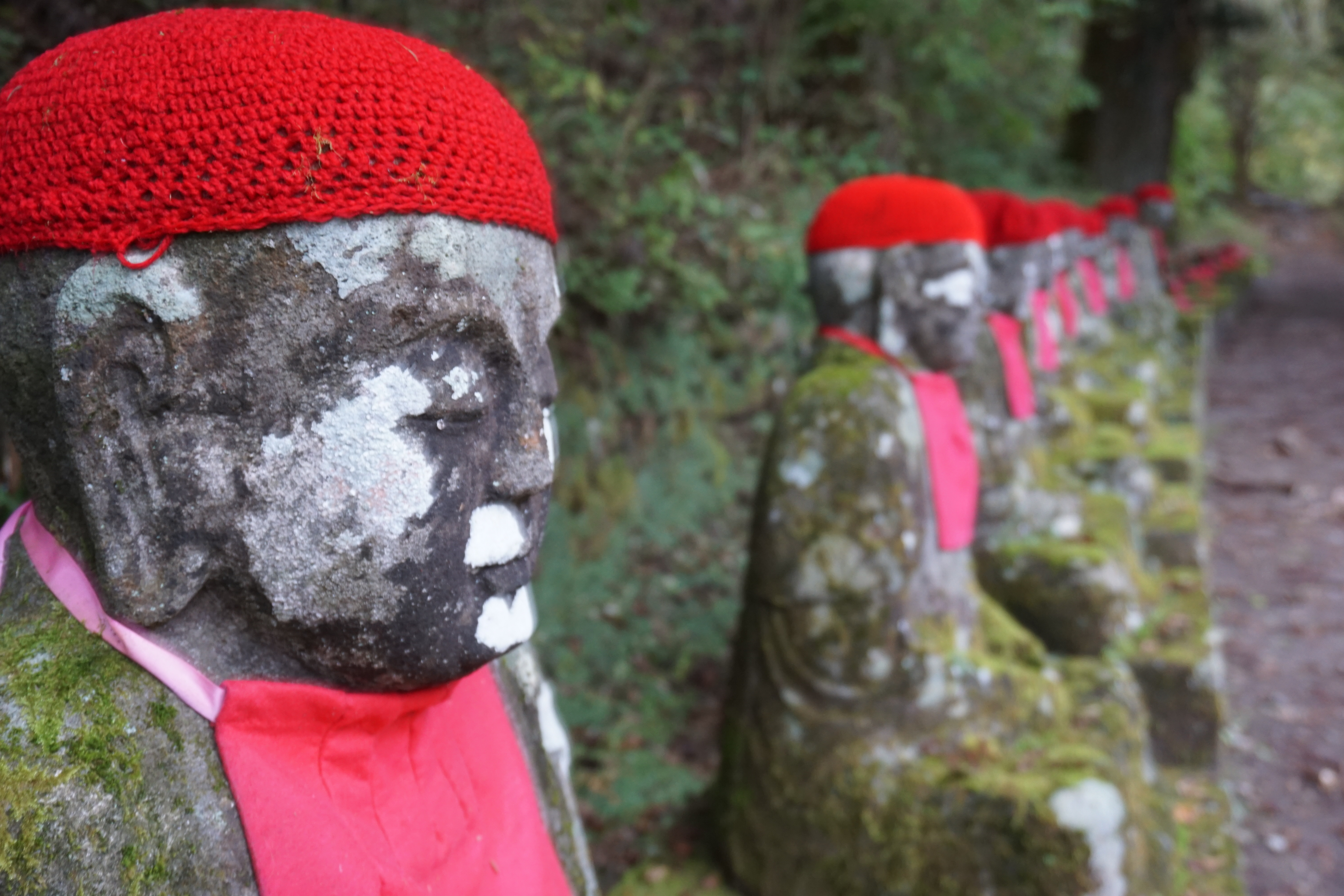 A close up of a stone Jizo statue with a red bonnet and a bib apron on the left of the picture, with a row of other seated Jizo, out of focus. There is moss on the statues and on the wall behind the statues, in Nikko, Japan